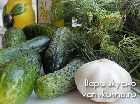 приготовление малосольных огурцов в пакете